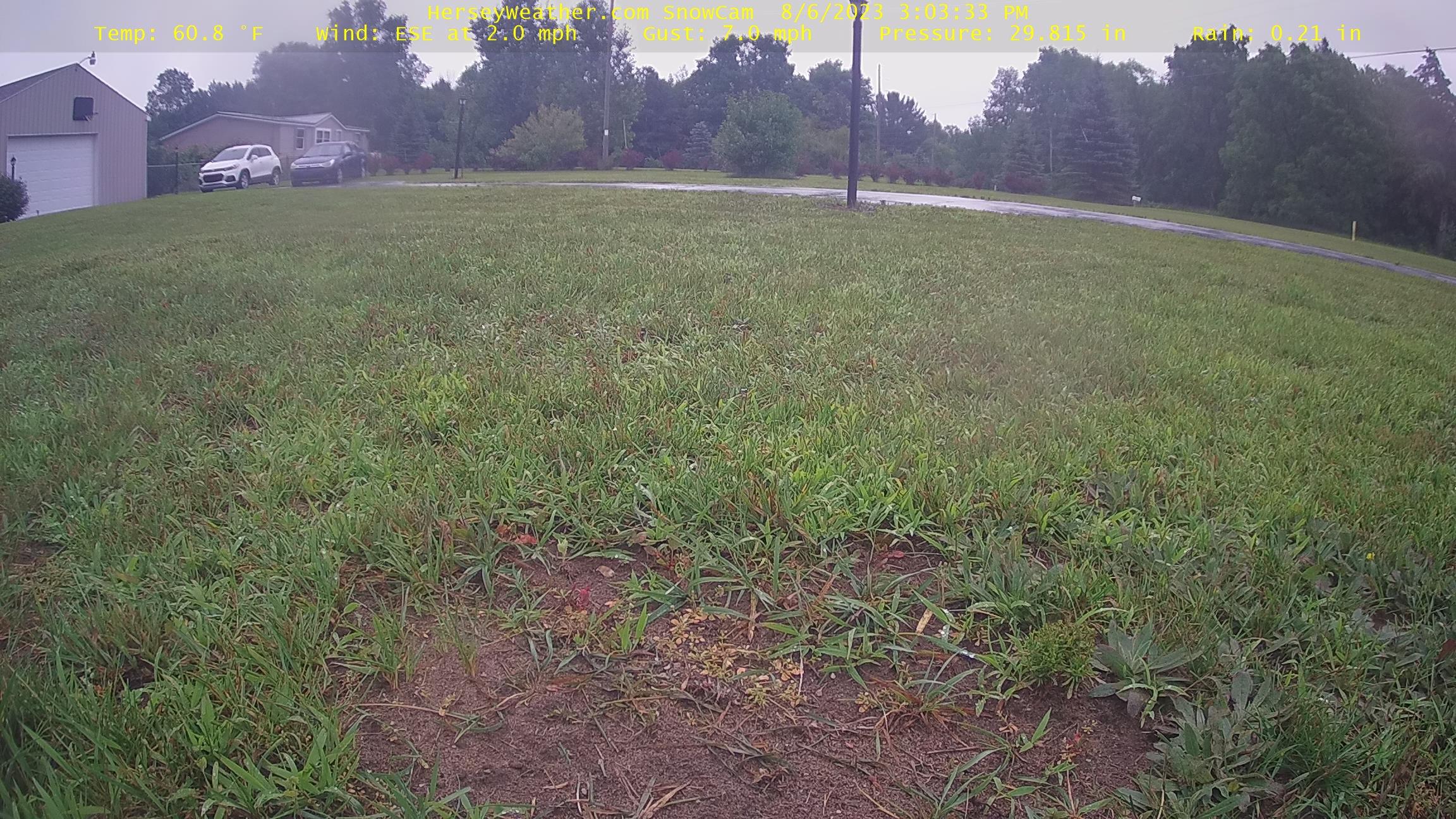 Snowcam Image